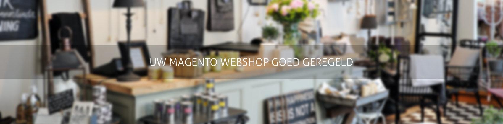 Responsive magento webshop